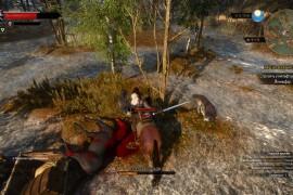 Лощадь в игре Ведьмак 3: Дикая охота