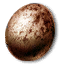 egg_gryphon_64x64.png.(6884)
