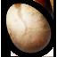 egg_harpy.dds.(6885)