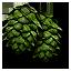 hop_umbels_64x64.png.(6676)